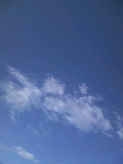 今日の天気は…