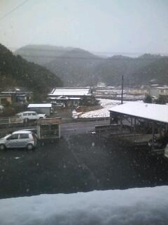 やっぱり雪