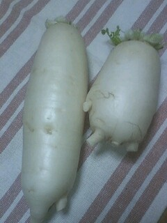 収穫物2012 菜園編 ダイコン